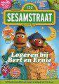Sesamstraat11