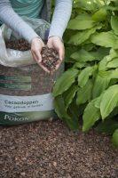 MdR 28713-70 Pokon cacaodoppen 10cm