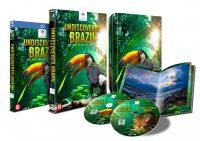 undiscovered brazil