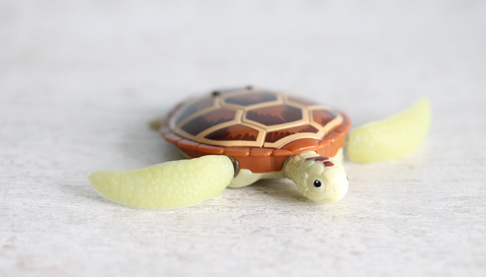 robo turtle banner