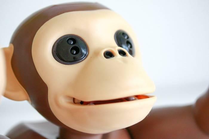 Recensie zoomer chimp bediening 2