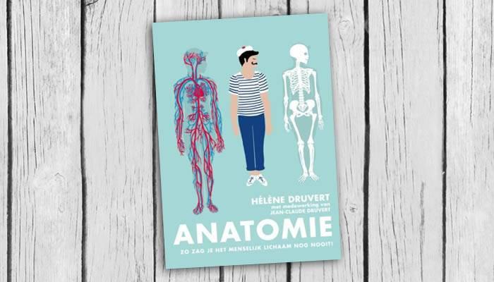 anatomie-zo-zag-je-menselijk-lichaam-nog-nooit