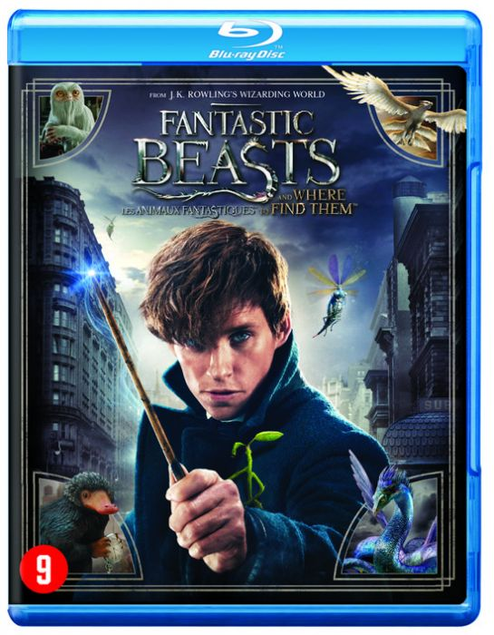 fantastic beasts and where to find them brd