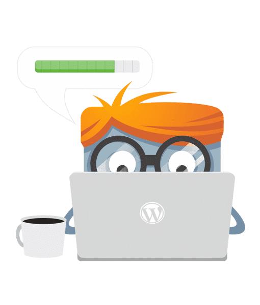 WordPress website update abonnement1