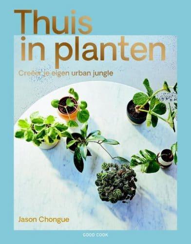 Thuis in planten Jason Chongue