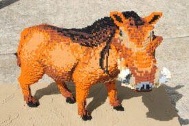 Burgers Zoo - lego - wrattenzwijn
