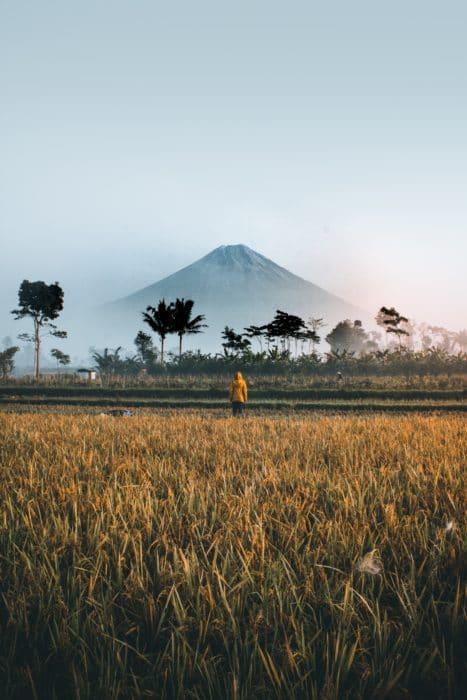 indonesie bromo vulkaan