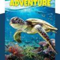 Turtle Adventure