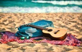 staycation vakantie thuis thema hawaii - ukelele 1