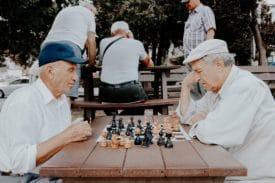 schaken oude mannen frankrijk