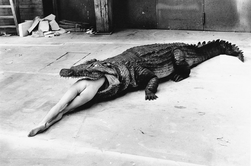 HELMUT NEWTON Crocodile with model Pina Bausch Ballett Wuppertal 1983 c Foto Helmut Newton