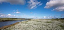 Friesland Schiermonnikoog